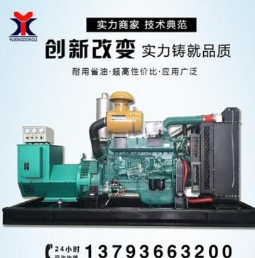 200kw柴油发电机组潍柴送电瓶无刷全铜电机千瓦应 永磁发电机