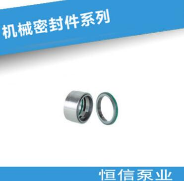 恒信泵业厂家直销BDM1系列泵用机封 机械密封件