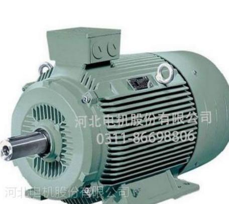 河北电机冠生牌IE2系列高效三相异步电动机