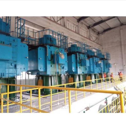 大型异步高压立式电机(YLKS)