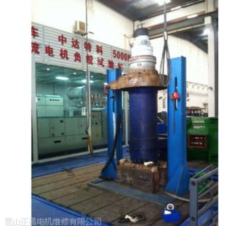 苏州无锡常州镇江南京ABS凯士比进口水泵潜水泵维修