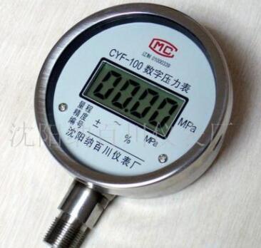 供应CYF-100数字压力表