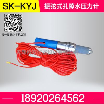 振弦式孔隙水压力计 孔隙水压力传感器 孔隙水压力监测传感器
