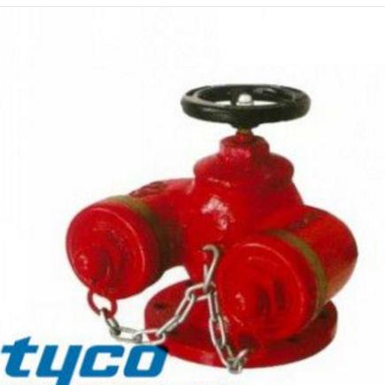 供应tyco泰科SQD多用式消防水泵接合器