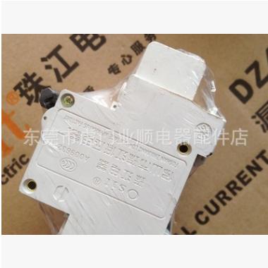 珠江电气断路器白色漏电开关保护器40A工厂漏电保护DZ47LE-63/2P