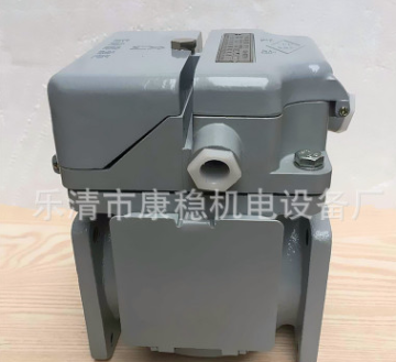 QJ-25全密封式气体继电器瓦斯继电器QJ-25TH变压器配件