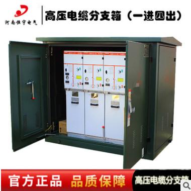 恒宇电气 现货特卖10KV电缆分支箱 DFW-12户外高压电缆分线箱