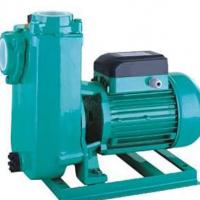 PZ900电泵