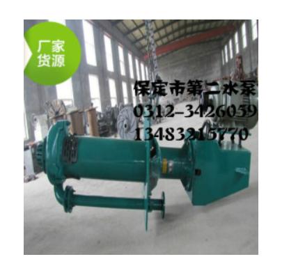 月明河65QV-SP立式液下渣浆泵钢厂专用