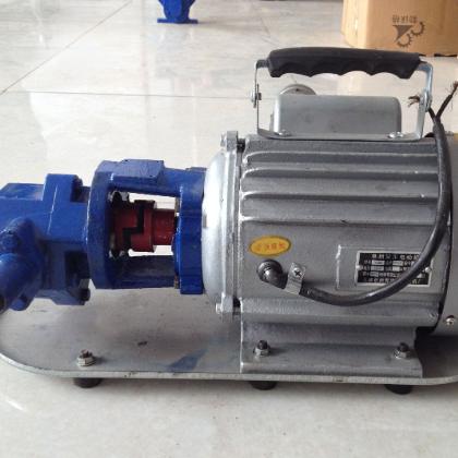 鸿涛 WCB-30型便携式手提齿轮油泵