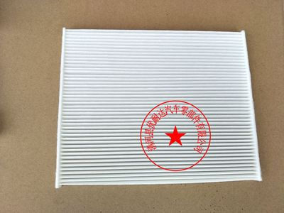 DG9H-18D483-AA林肯MKZ空调滤芯林肯空调滤清器冷气格