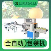 佛山厂家直供自动柠檬包装机柑橘罗汉果打包机广西百香果包装设备